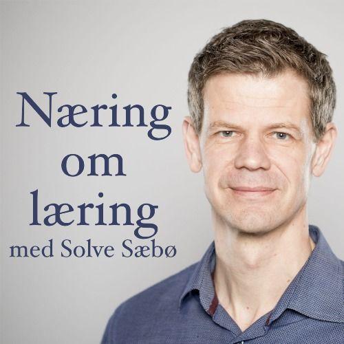 Profile picture for Solve Sæbø